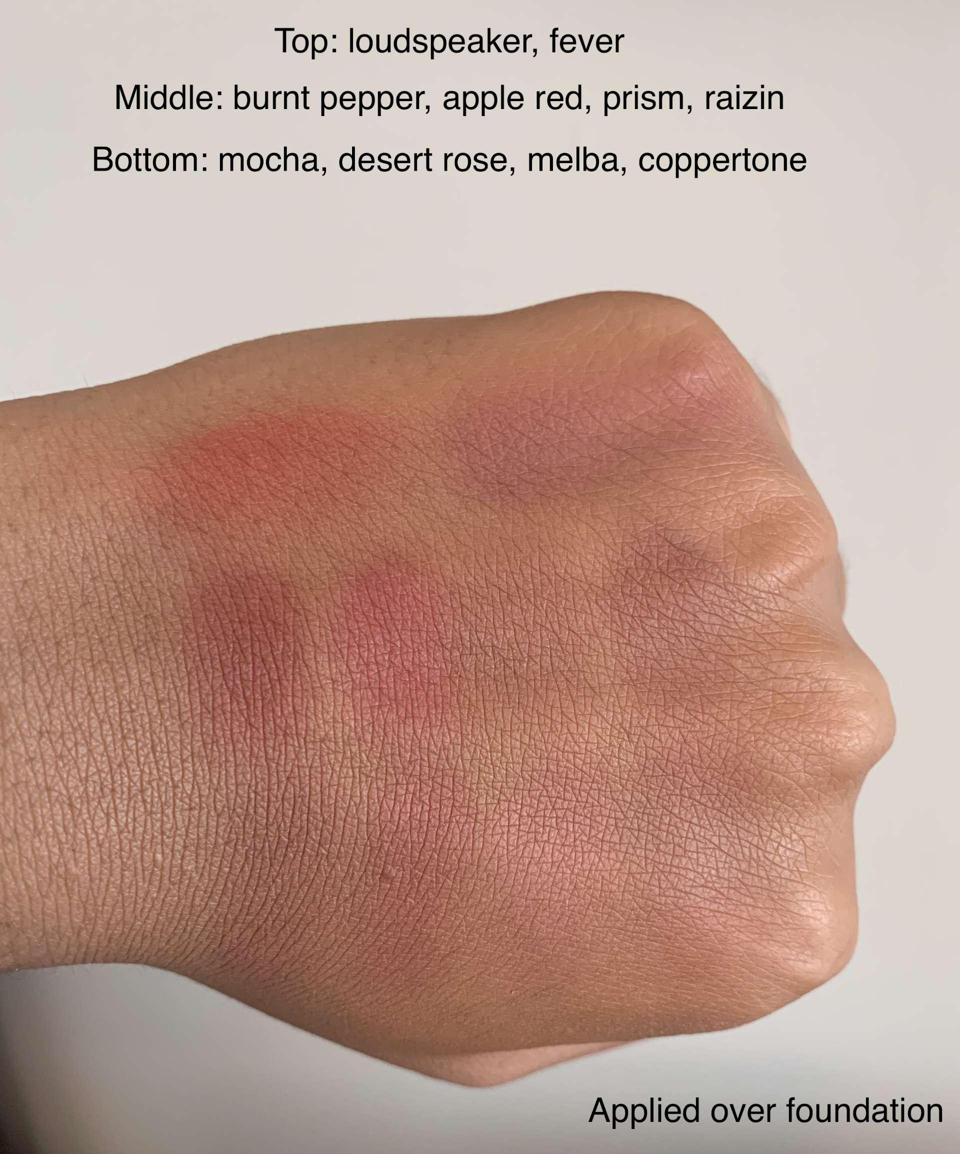 MAC Matte Blush (loudspeaker, fever, burnt pepper, apple red, prism, raizin, mocha, desert rose, melba, coppertone) swatches dark skin