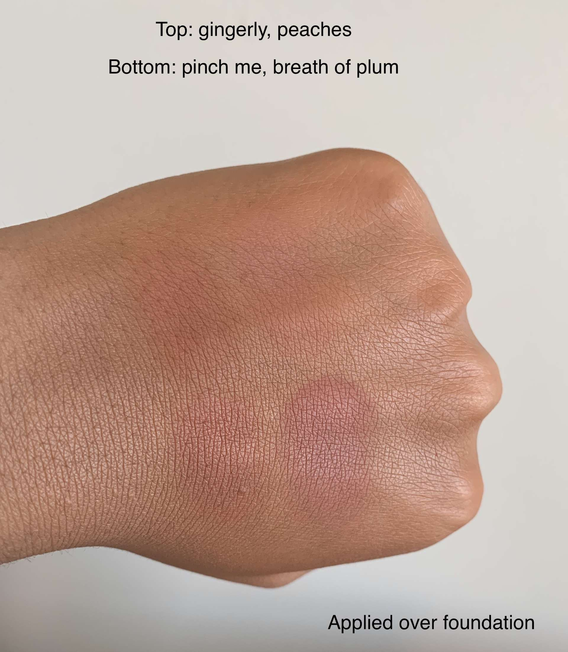 MAC Sheertone Blush (gingerly, peaches, pinch me, breath of plum) swatches on dark skin