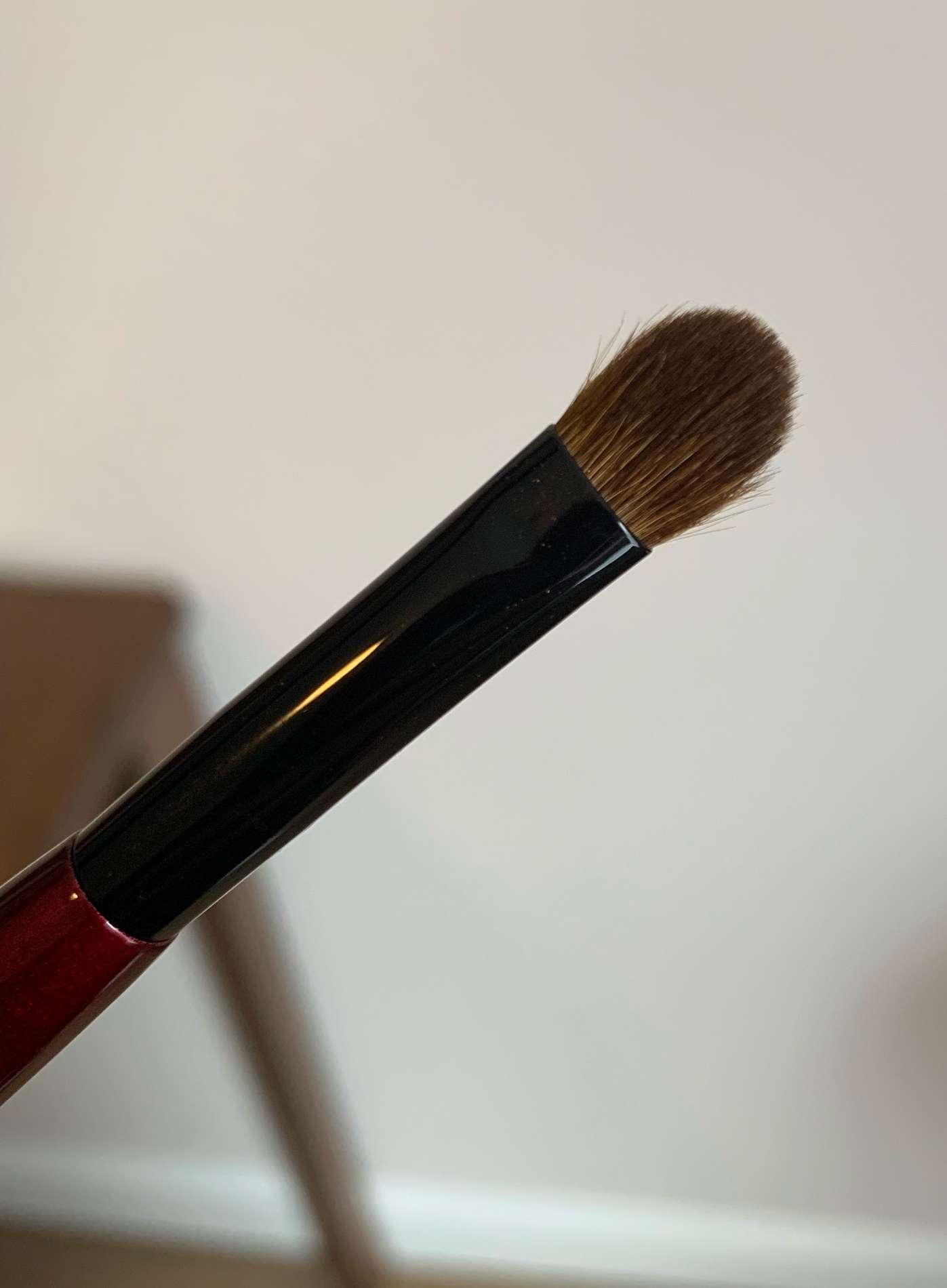 Sonia G Builder Pro Brush Review